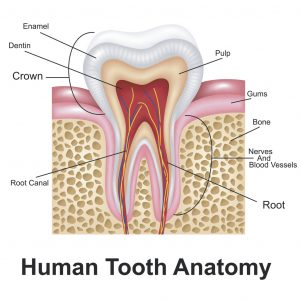 best dentist costa mesa - emergency dentist costa mesa - cosmetic dentist costa mesa - dental implants costa mesa - dentist near me - dentist open now - saturday dentist - ppo dentist - delta dental - teeth whitening - dental veneers - laser dentistry - invisalign - tooth pain - cavity - dental crown - root canal - toothache - staining